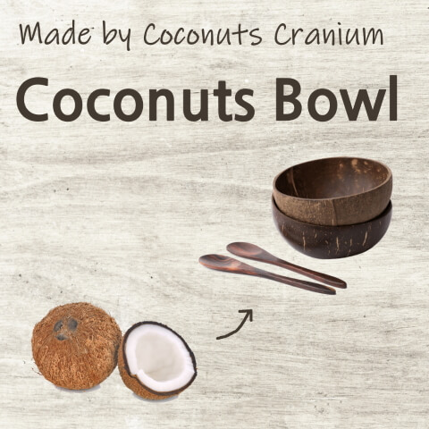Mirainesia - Coconuts Bowl made by Cranium