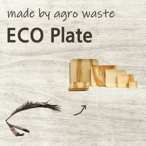 Mirainesia - Eco Plate made by agro waste